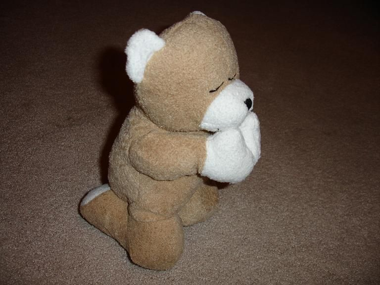 You can find these and other praying plush animals on www.ArmenianVendor.com