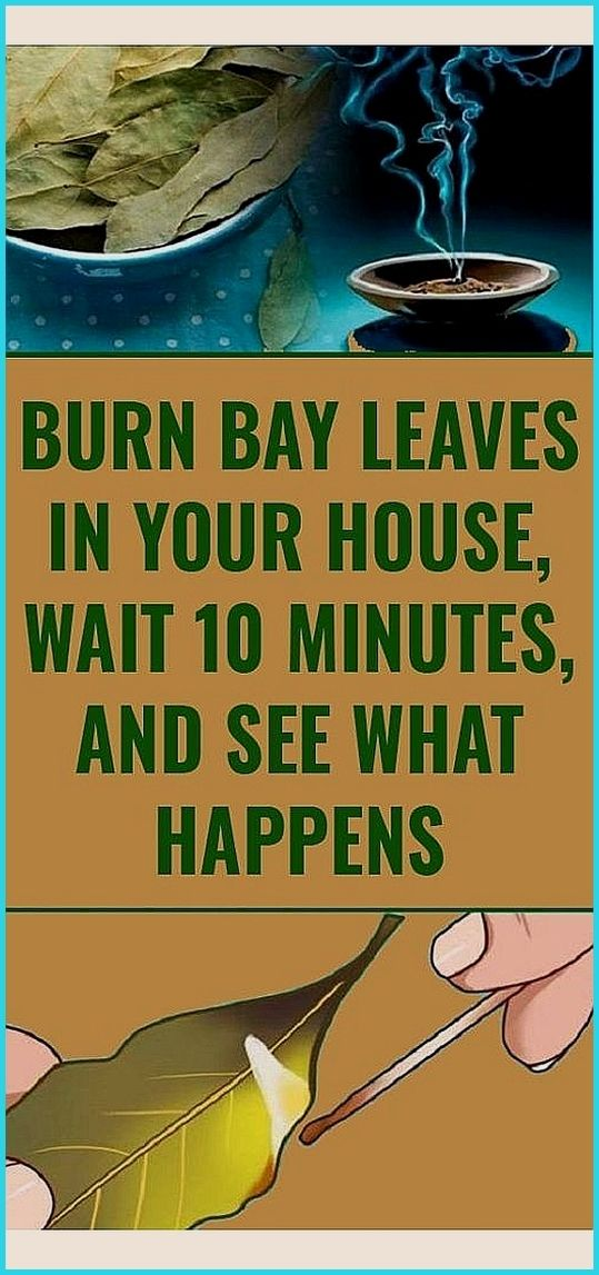 Burn Bay Leaves In The House And See What Happens