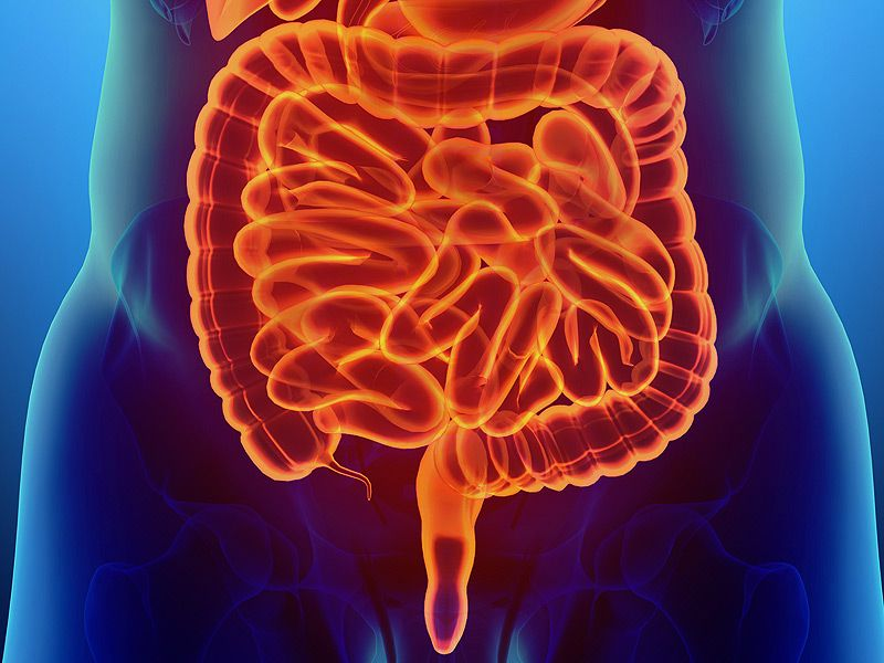 Treatment Of Irritable Bowel Syndrome With Chinese Herbal Medicine