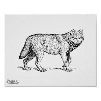 dibujos de lobos siberianos a lapiz de perfil  Buscar con Google