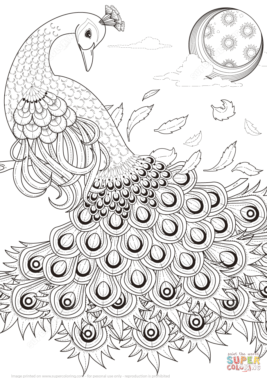 Pin By Joannefanny On Draw Draw Drawing D In 2020 Peacock Coloring Pages Cool Coloring Pages Coloring Pages