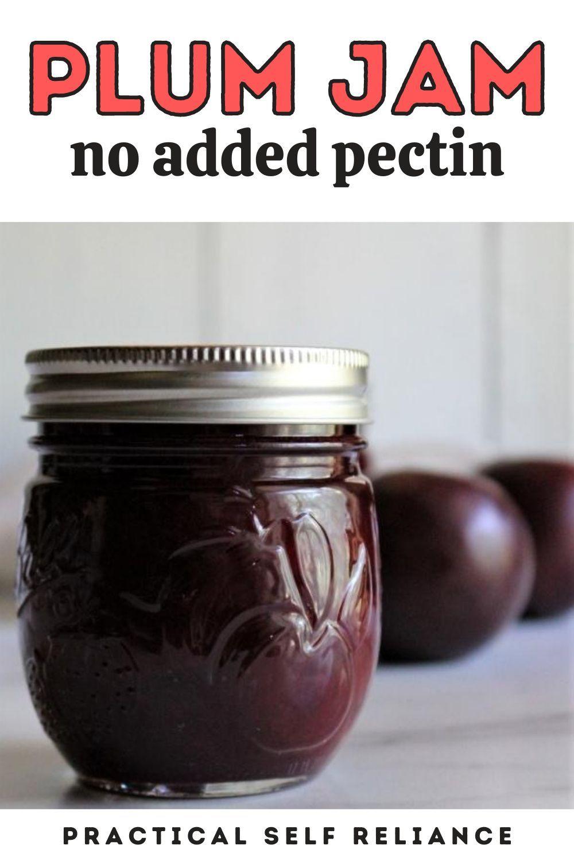 Plum Jam Recipe Without Pectin Recipe Plum Jam Plum Jam Recipes Jam Recipes