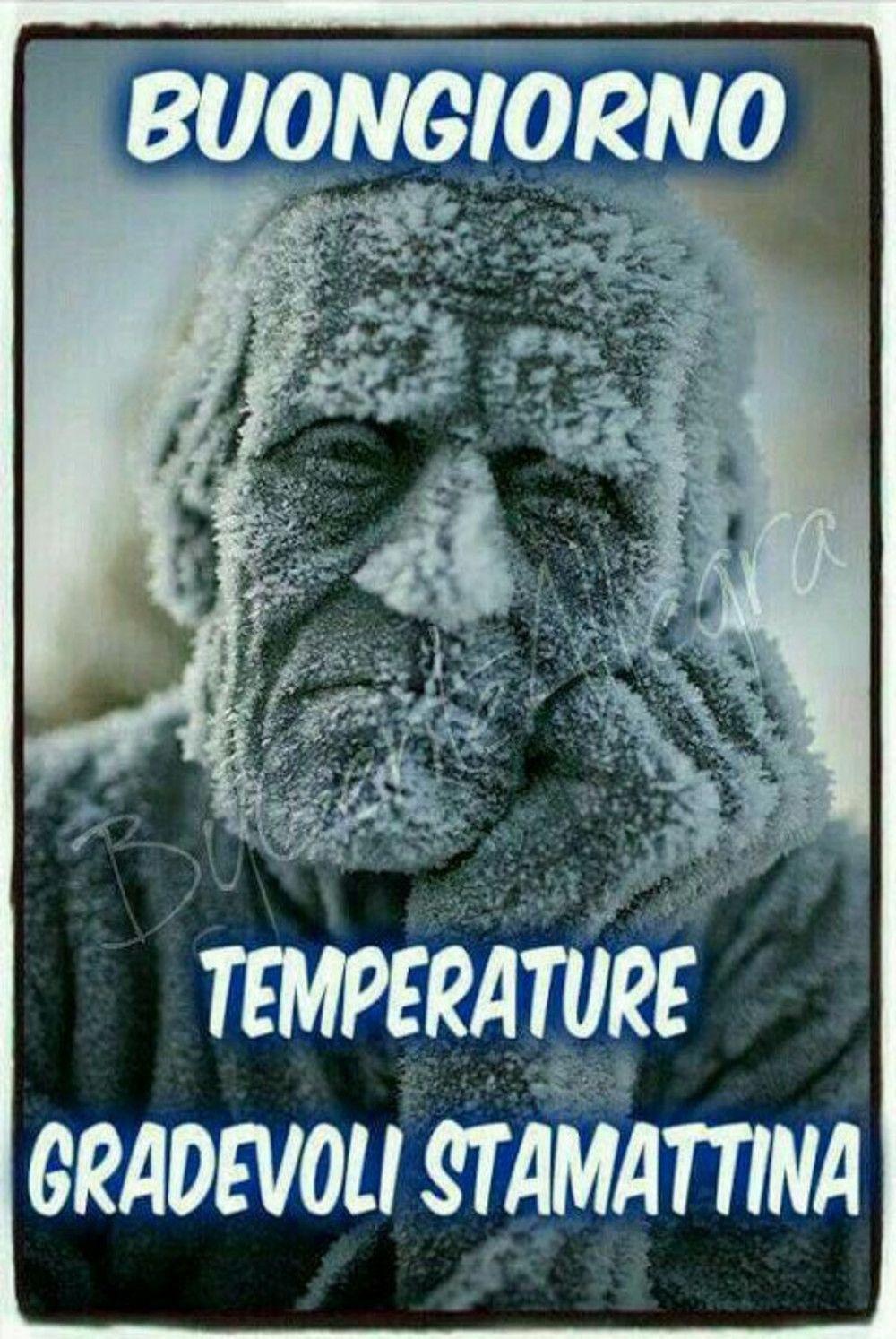 Il Freddo Quando Arriva buongiorno che freddo immagini da ridere | buongiorno