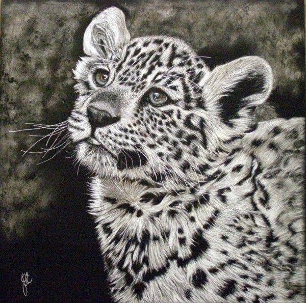 White Jaguar Cat: Pin On Places To Visit