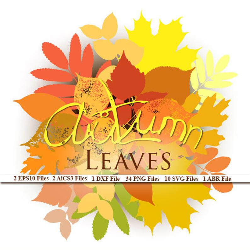 Vector Autumn Leaves Set 21 Png Files 6 Eps10 Files 6 Etsy Autumn Leaves Create Invitations Christmas Watercolor
