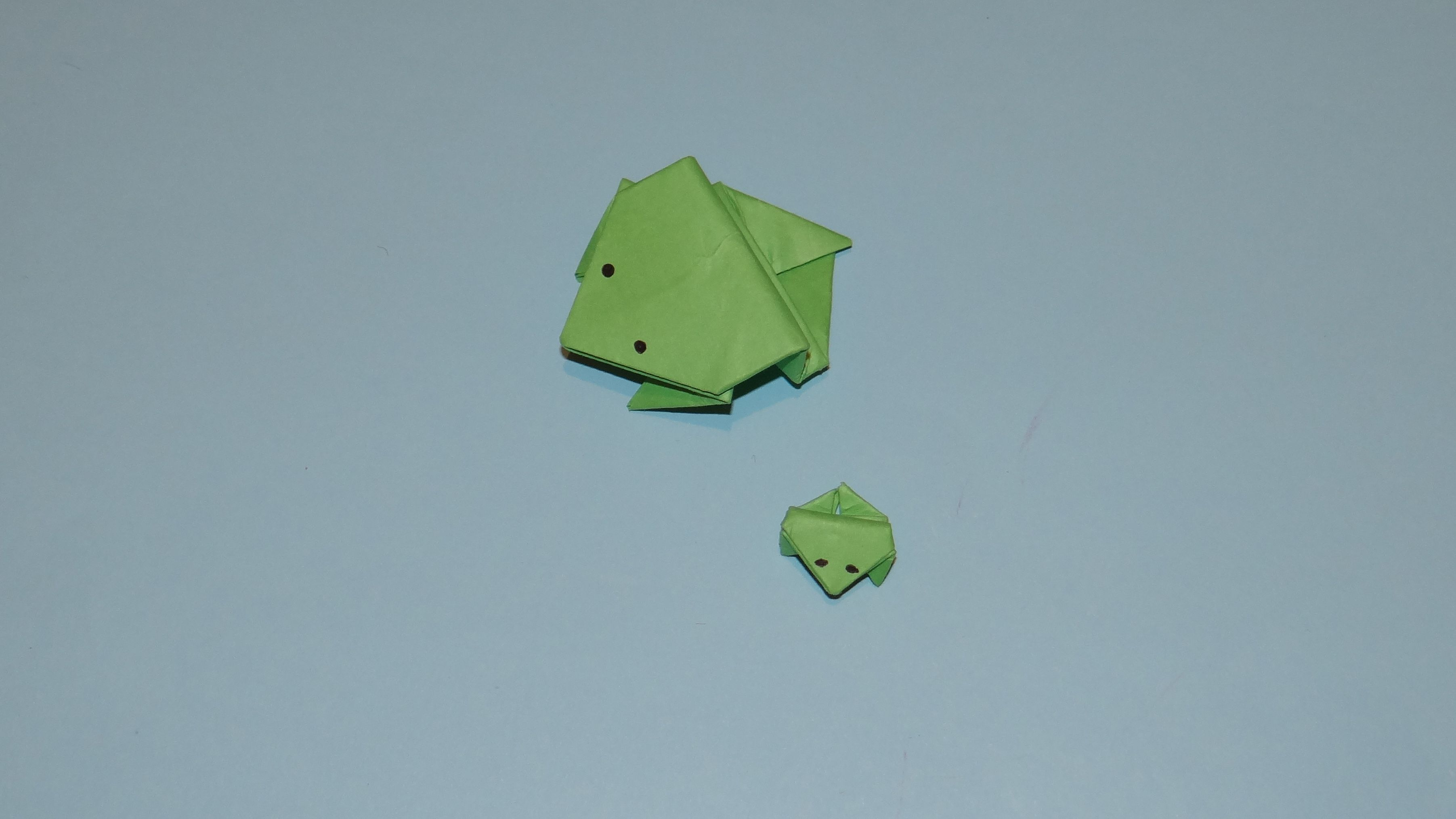 Phow to make an origami fly this origami frog is not only for phow to make an origami fly this origami frog is not only for jeuxipadfo Image collections