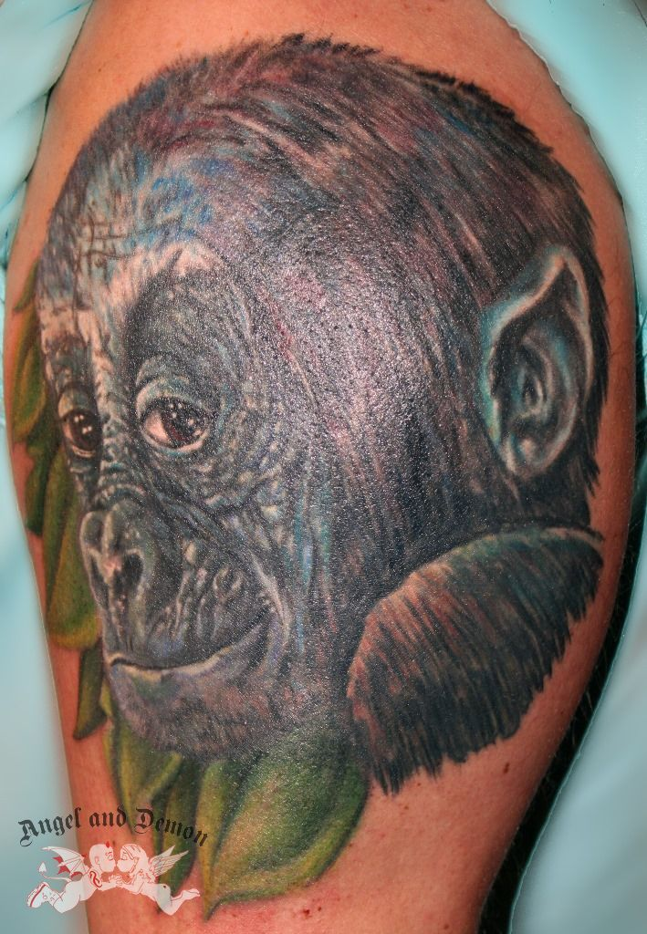 #tattoo #tattooshop #angelanddemon #bodyart #bodytattoo #ink #tattooink #permanentmakeup #piercing #brielle #monkey #ape #finelineart
