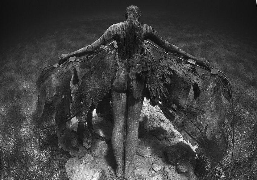 underwater scultpure 41
