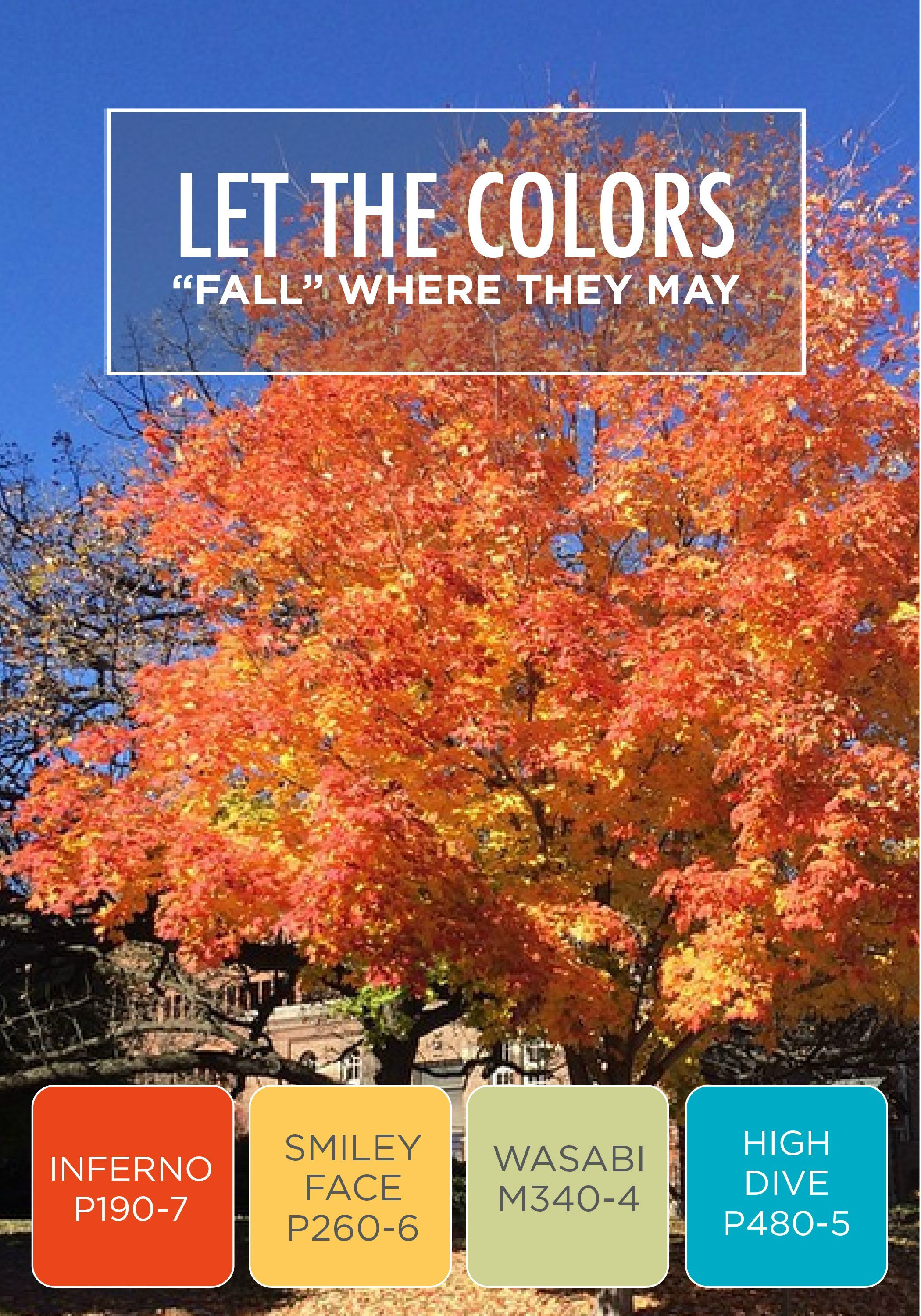 Let The Beautiful Hues Of Fall Inspire You When Choosing