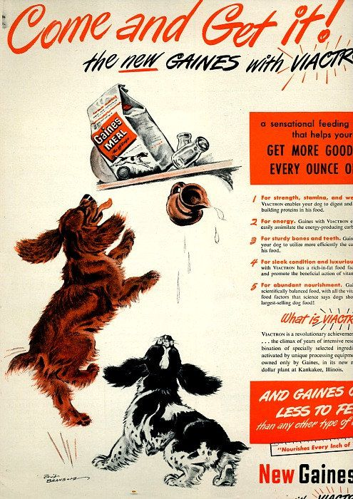 antique puppies 1948 advertisement dog food by