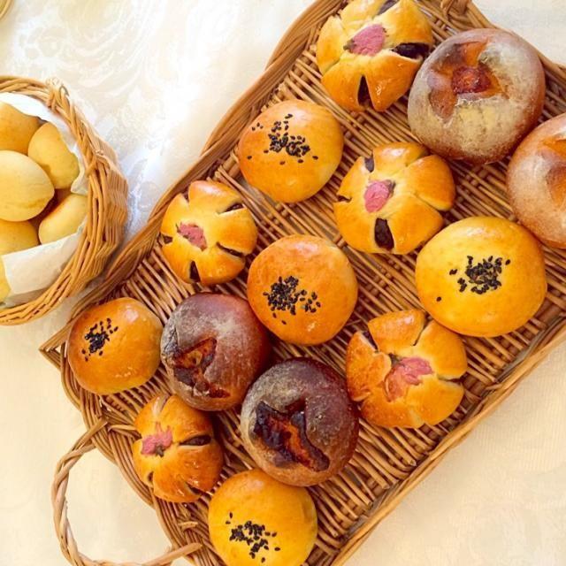 どれも綺麗でとっても美味しかったです沢山作って来てくださってありがとうございますヽ(´∀`)ノ - 75件のもぐもぐ - Delicious bread by rirunonりるのんさんの美味しいパン❗ by Ami