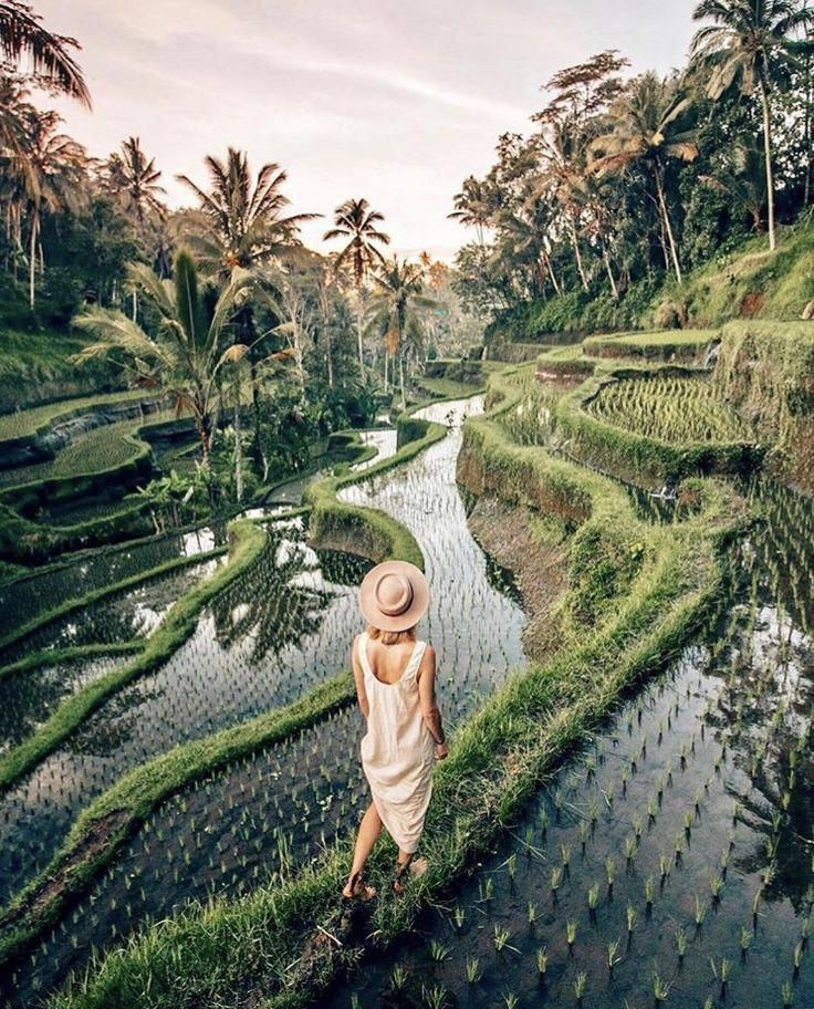 @travelinladies Instagram. Tegalalang, Bali, Indonesia
