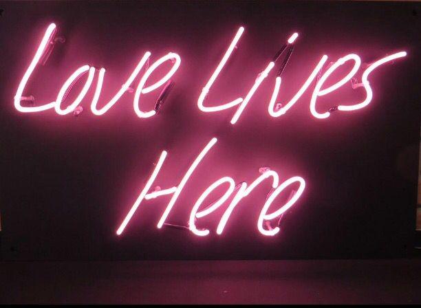 Love Lives Here Neon Sign Imagenes Instagram Libreta De Apuntes Luz De Neon