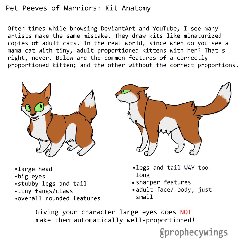 Pet Peeves Of Warriors 5 Kit Anatomy By Scourgeseer Warriors