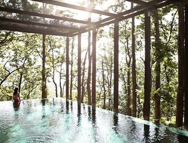 The Best Wellness Retreats Across The Country   Detox and
