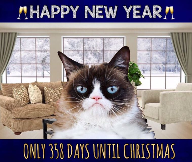 Happy New Year 🎊 Only 358 Days Until Christmas