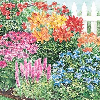 Nice Butterfly And Hummingbird Garden   The Other Half Of This Yearu0027s Garden  Plans. I