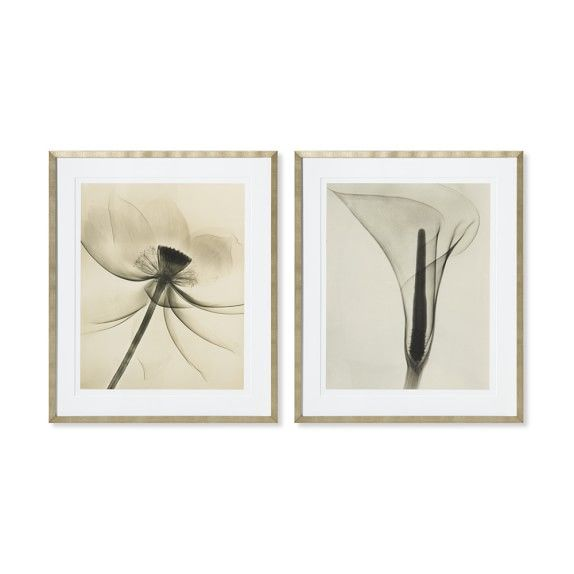 Wall decorations to add style to any room dain tasker photography lotus wide open williamssonoma