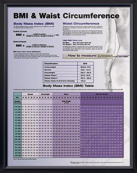 Bmi Waist Circumference Chart 20x26 Diabetes Pinterest
