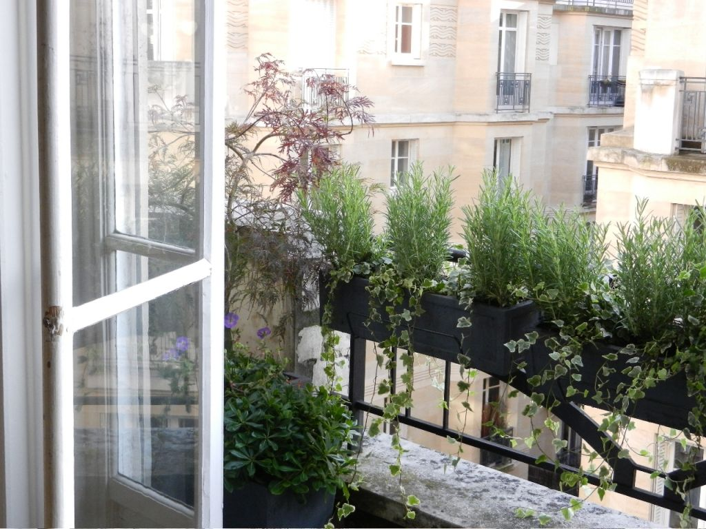 Appartement Jardin Terrasse Paris L Aurey Des Jardins Balcon Paris Decoracion Balcony Plants
