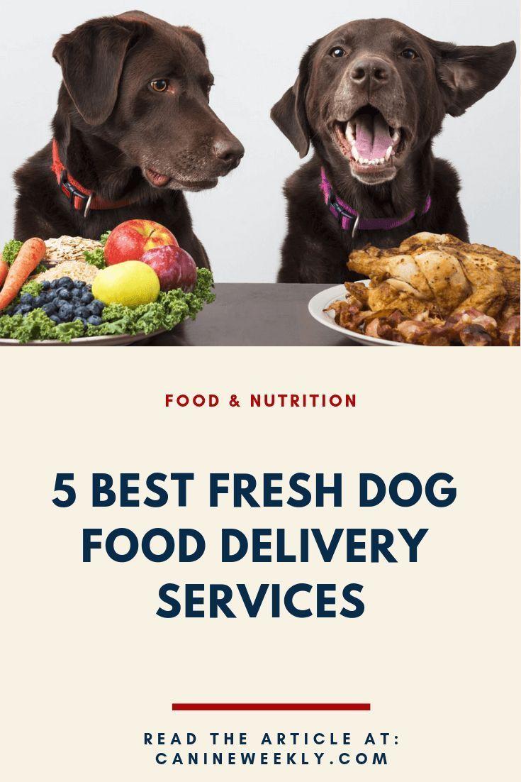 7 best fresh dog food delivery services for 2020 dog