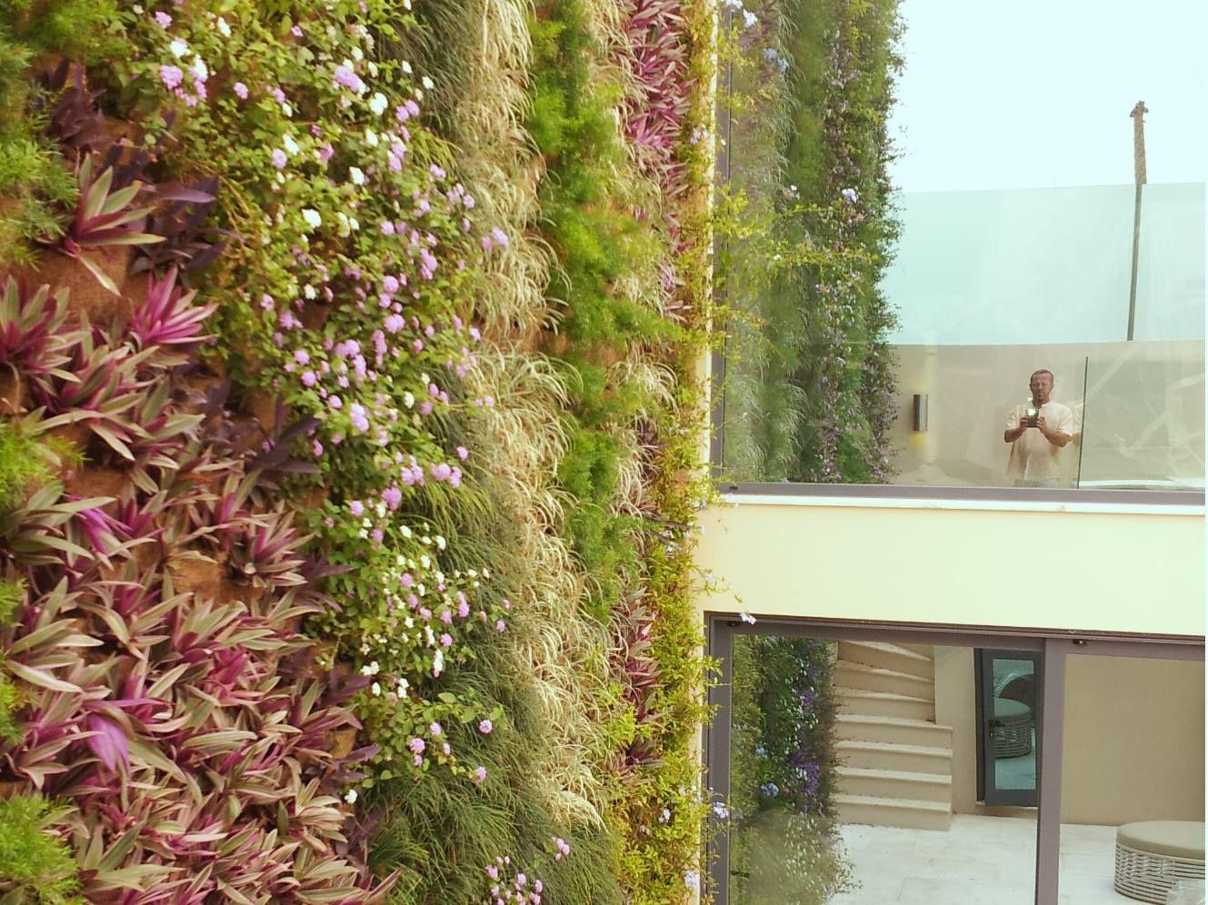 poliflor, luanda green wall, flexiverde vydro | Poliflor - giardini ...
