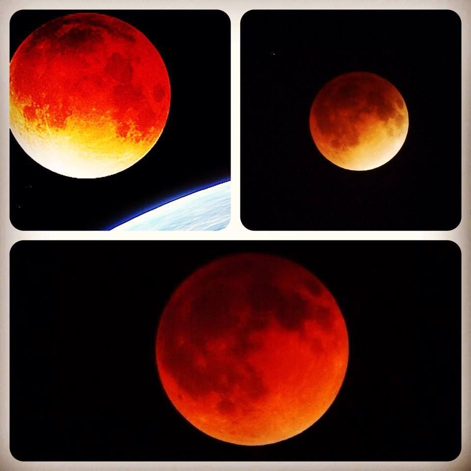 Blood Red Moons 2014 - Pics about space