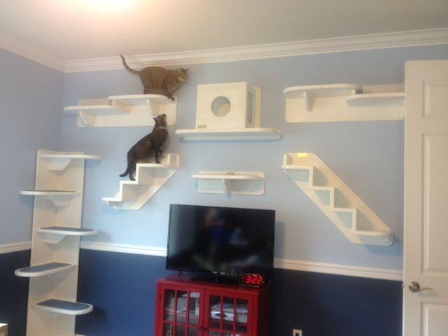 Parete Attrezzata Gatto Arredamento Alberi Per Gatti