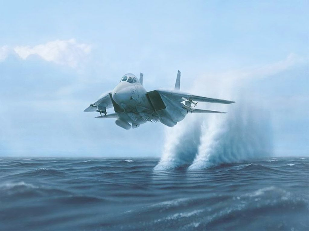 An amazing shot of an F-14 Tomcat skimming the water.