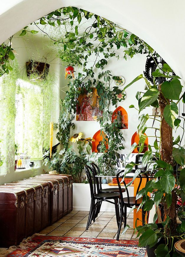 Simple Living Room Decor With Plants