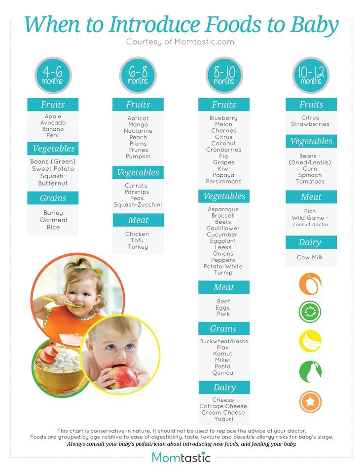 Solid Food Chart For Babies Aged  Months Through  Months  Find