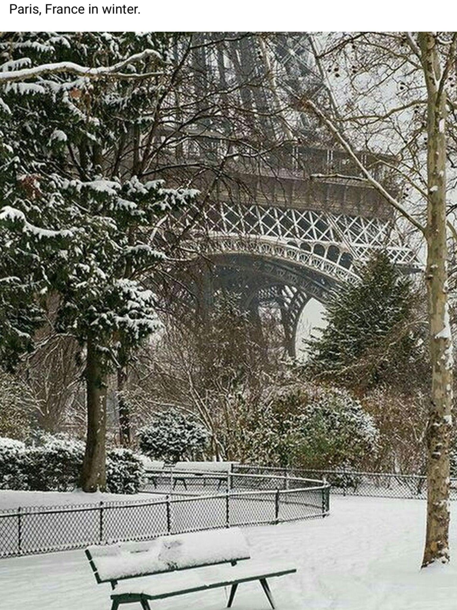 #WINTER##NATURE# #TRAVEL##PARİS#