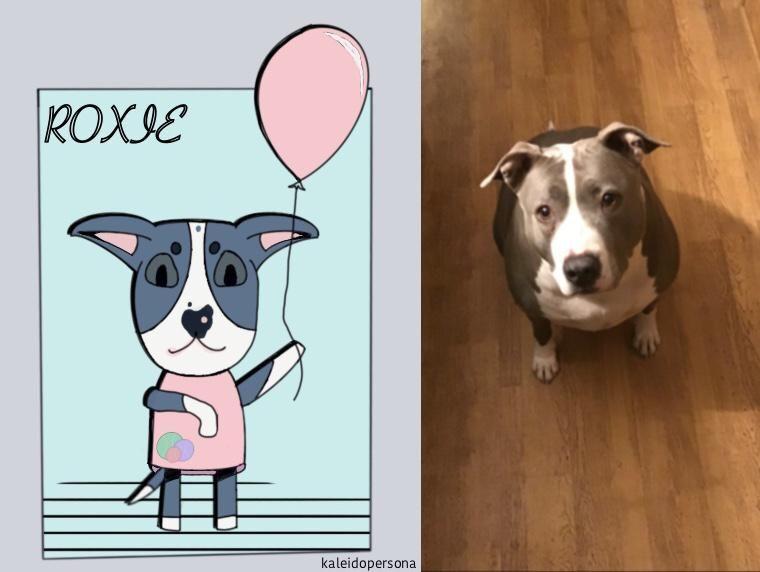 I Drew My Baby Roxie As An Animal Crossing Villager Pitbulls