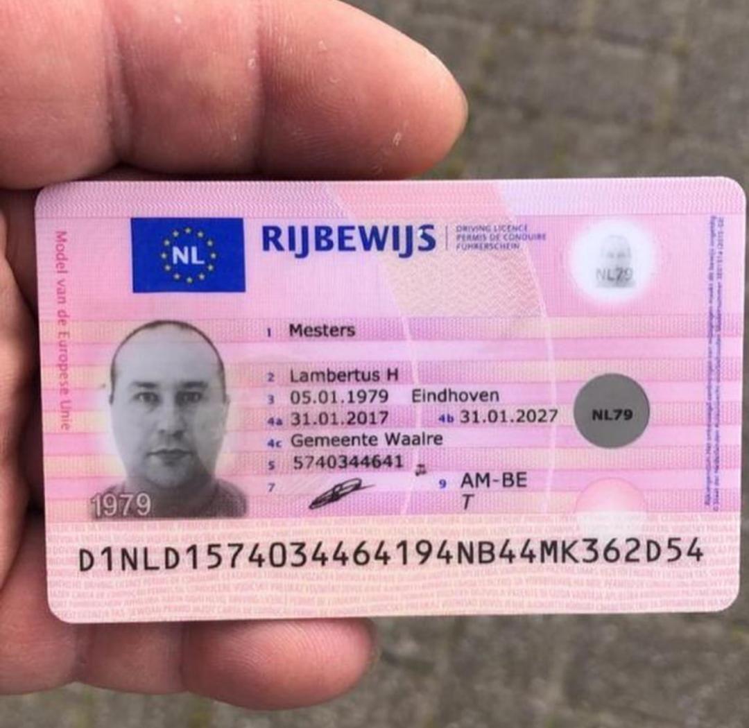 Netherland Id Card Netherland Driver License Netherland Id Kaart Nederlands Rijbewijs Drivers License Driving License Passport Online