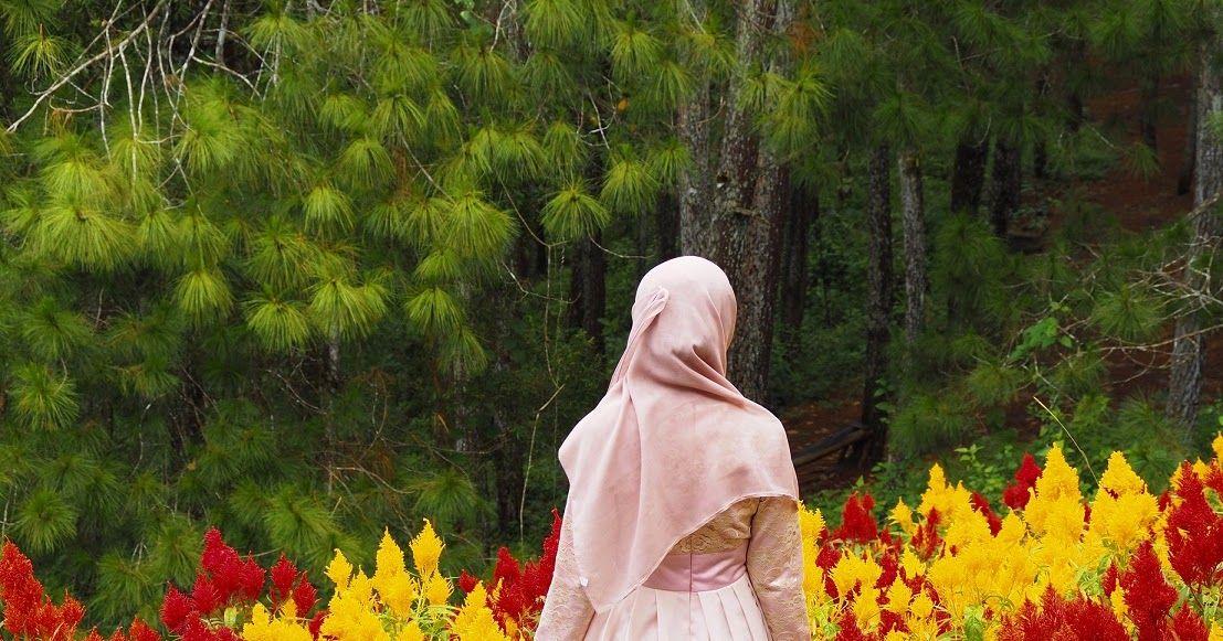 Gambar Bunga Di Taman Dwi Susanti Rona Pagi Di Taman Bunga Matahari Dewari Gambar Menanam Halaman Rumput Suasana Pondok Botani Belukar W Di 2020 Bunga Gambar Taman