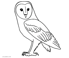 Barn Owl Template Google Search Owl Coloring Pages Horse Coloring Pages Elephant Coloring Page