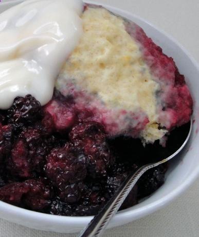 recipe: blackberry dumplings with bisquick [6]