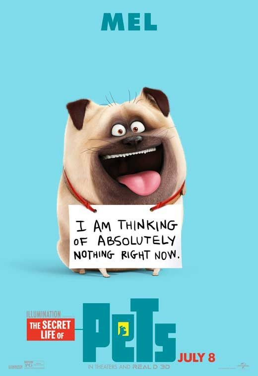 The Secret Life Of Pets 2016 11x17 Movie Poster In 2020 Pets Movie Secret Life Of Pets Secret Life