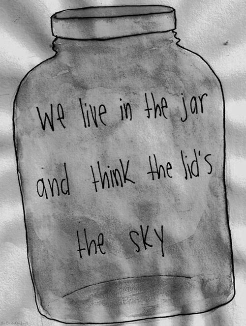 We live in the jar and think the lids the sky We live in the jar and think the lids the sky