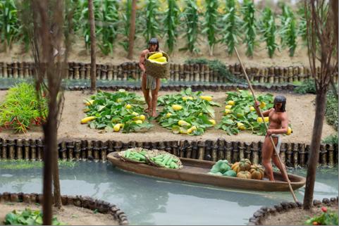 5ddec1983cc068a185238e6df2a75f25 - Inca Terrace Farming And Aztec Floating Gardens