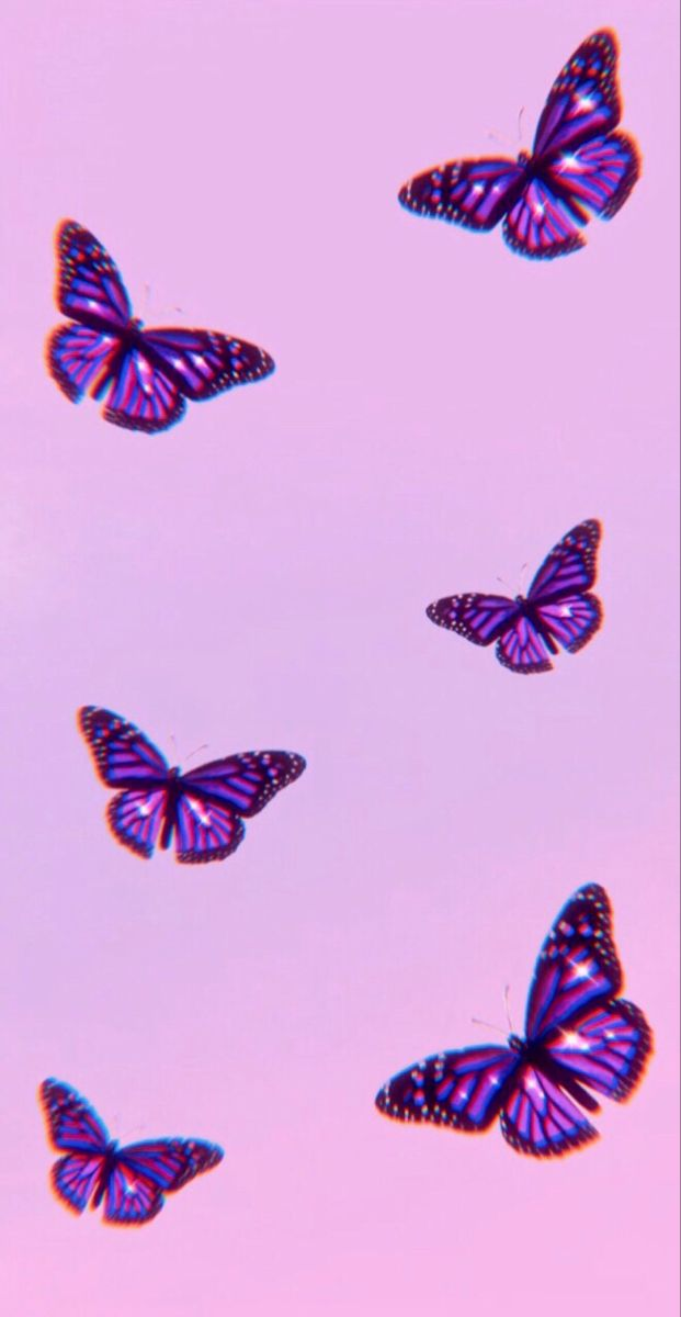 Purple Butterfly Wallpaper For Iphone Instagram Butterfly Wallpaper Purple Butterfly Wallpaper Butterfly Wallpaper Iphone Iphone wallpaper butterfly images