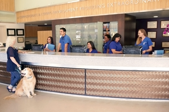 Our Vca Veterinary Specialists Of The Valley Staff Is Ready To