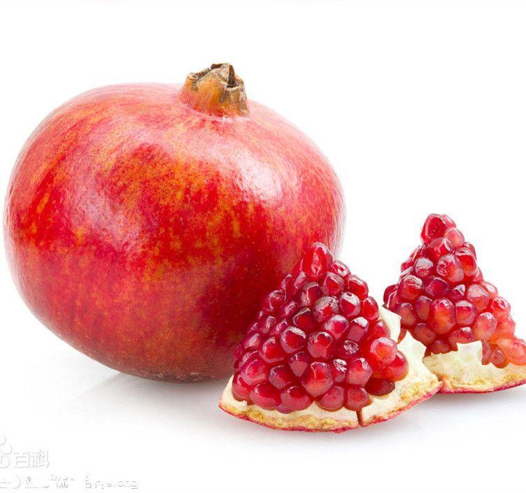 ارتفاع معدل إنبات بذور الرمان زراعة Fruit Pomegranate Pomegranate Seeds
