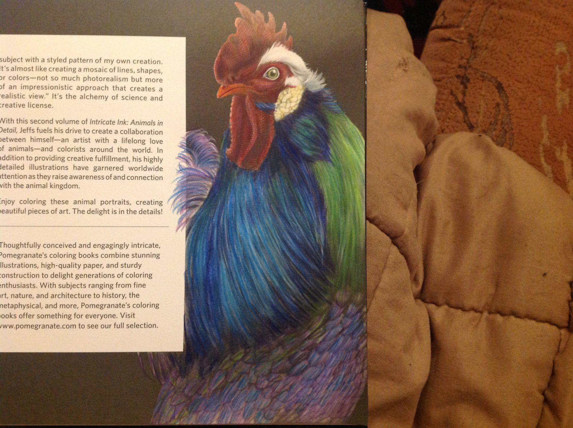 Kerstins Küchentraum ~ 1001 best volume 2: intricate ink animals in detail images on