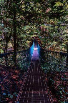 Enclosed Trail (126 pieces)