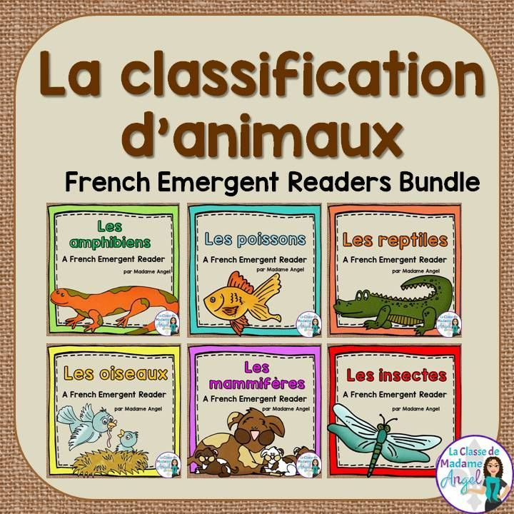 La Classification Des Animaux French Animal Classification Readers Bundle Animal Classification French Emergent Readers French For Beginners