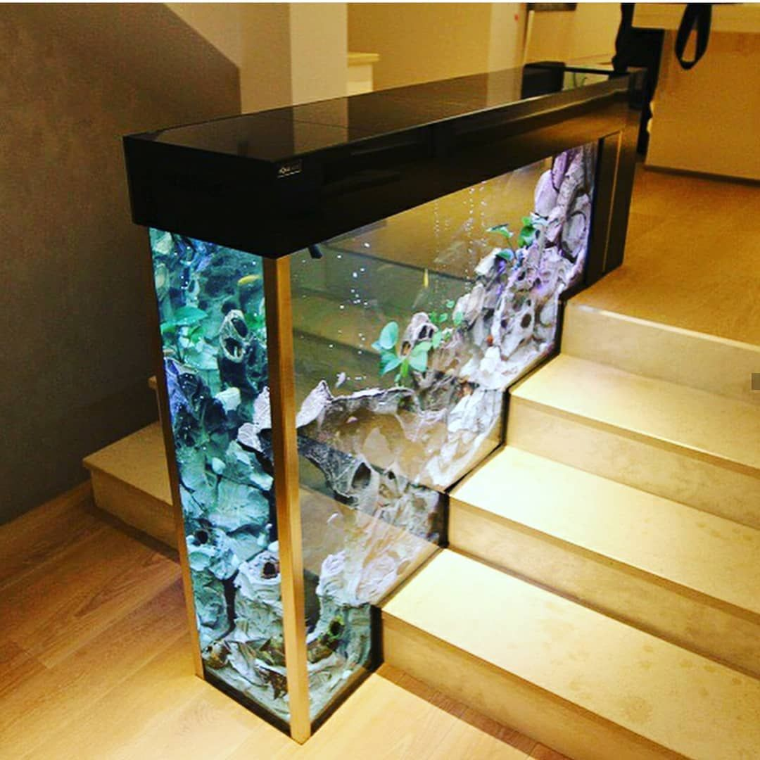 Aquarium Hobby On Instagram What Are Your Thoughts On This Tank We Can T Seem To Wrap Our Heads Around It Photo Decor Aquarium Design Home Aquarium