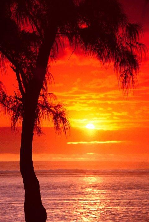 Coucher de soleil la r union nos petits coins de - Dessin coucher de soleil ...