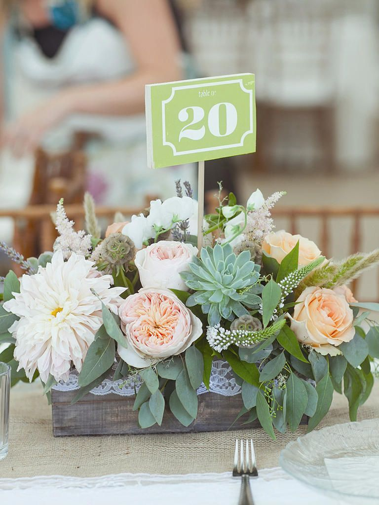 Succulent centerpieces are so in include these adorable diy