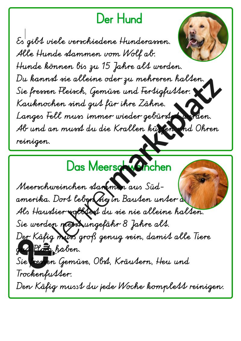 Abschreibkartei Haustiere Schreibschrift Unterrichtsmaterial In Den Fachern Deutsch Sachunterricht Kartei Schreibschrift Schrift